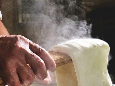 Paris Creek Farms - Bi Organic Milk, Cheese, Yogurt, Quark