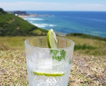 Newy Distillery - Gin, Vodka