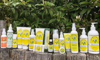 Lemon Myrtle Fragrances - Soap, Essential Oils, Skin Care products, Leaf tea, Insect Repellents