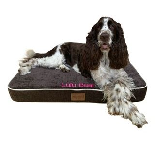 Rover Pet Products - Pet Products - Including Theraputic Bedding, Leads & Collars